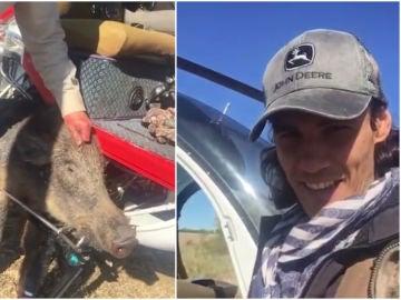 Cavani y su polémico vídeo de caza