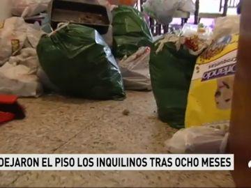 Unos inquilinos destrozan el piso a su propietario en Ferrol