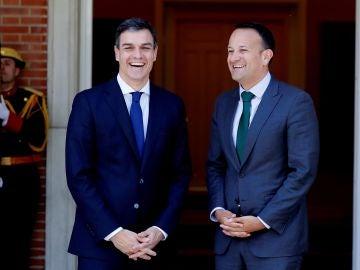 Pedro Sánchez, durante su encuentro con el primer ministro de Irlanda, Leo Varadkar