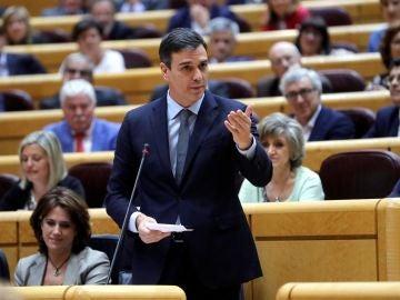 El presidente del Gobierno Pedro Sánchez, durante su intervención en la sesión del pleno del Senado