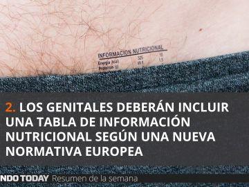 Noticias de El Mundo Today