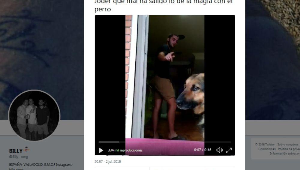 El truco con el perro sale mal