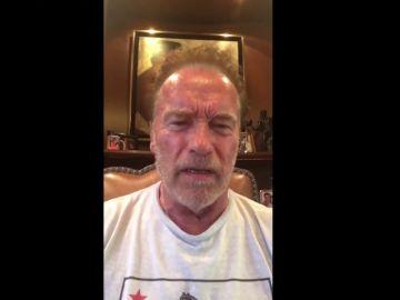 "Arnold Schwarzenegger llama a Trump ""fideo mojado"""