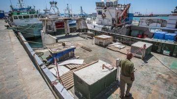 La UE y Marruecos logran cerrar su acuerdo sobre pesca