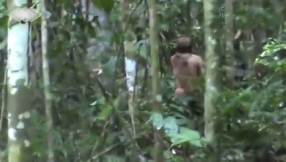 Graban al hombre más solo del mundo en la selva de Brasil