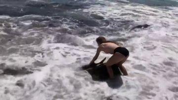 Una joven rescata a un tiburón varado en una playa de EEUU