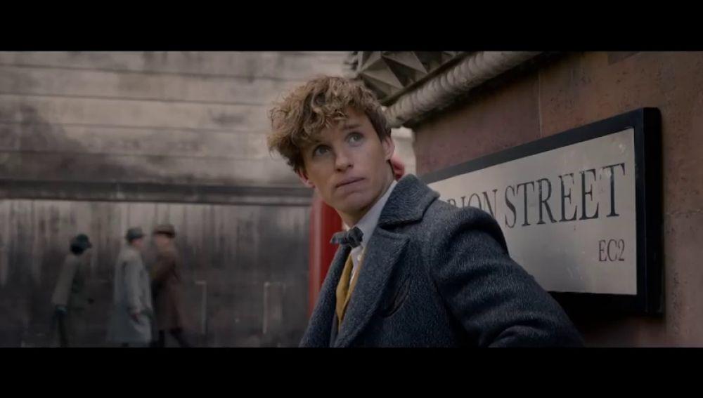 Newt conoce a Nicholas Flamel en el terrorífico tráiler de 'Animales fantásticos 2'