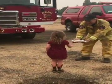 Ocho muertos y más de 93.000 hectáreas arrasadas por los incendios en California