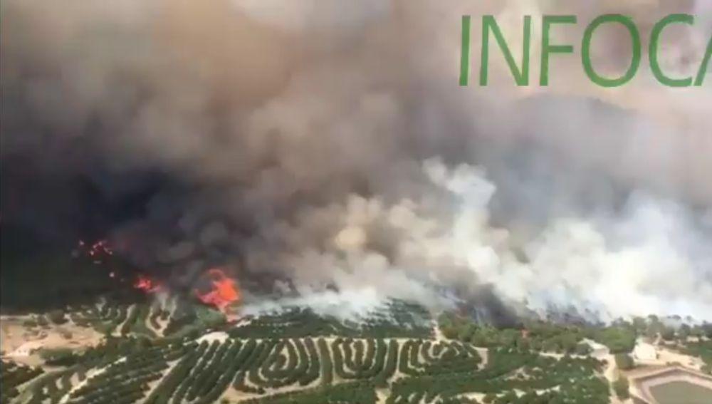 Incendio en Nerva, Huelva.
