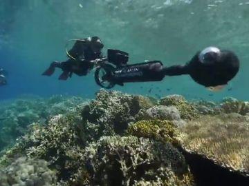 Encuentran unos arrecifes de coral sanos que podrían ayudar a contrarrestar los efectos del calentamiento global en los corales
