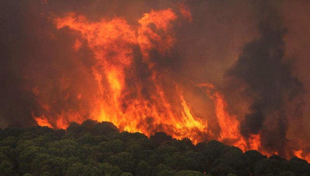 Activado el nivel 1 de Emergencias por un incendio forestal declarado en Nerva