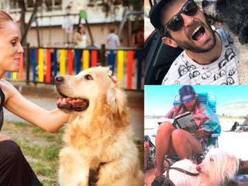 Los actores de 'Amar es para siempre' junto a sus mascotas