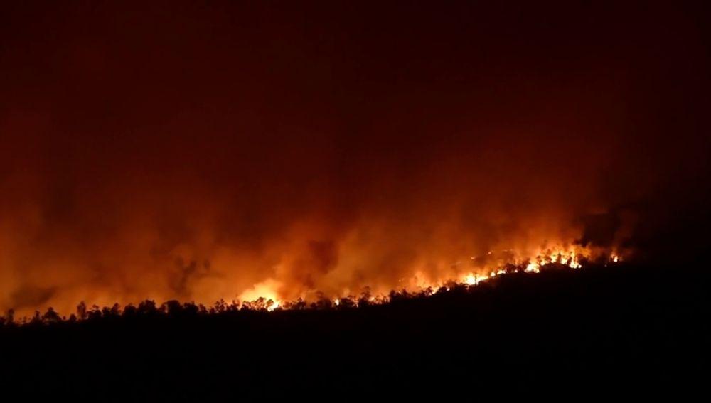 Medios aéreos se reincorporan a tareas de extinción del incendio de Huelva