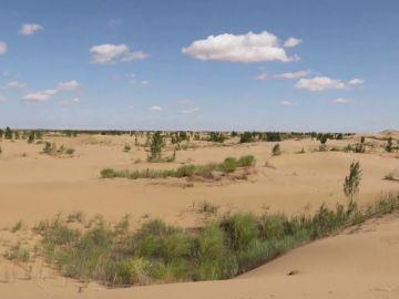 Los científicos alertan de que la Tierra puede caer en estado invernadero irreversible, lo que haría inhabitables varios lugares del planeta