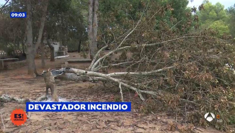 """Los vecinos de Gandía afectados por el fuego: """"Estamos desolados"""""""