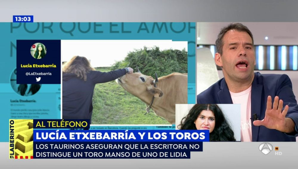 """Lucía Etxebarría enciende la red: """"El toro no es un animal agresivo, tienes que acosarlo"""""""