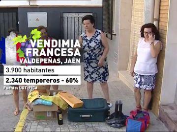 Miles de españoles acuden a Francia a la vendimia