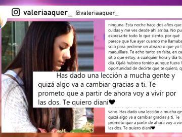 """Valeria Quer, en el segundo aniversario de la desaparición de Diana Quer: """"Te prometo que a partir de ahora voy a vivir por las dos"""""""