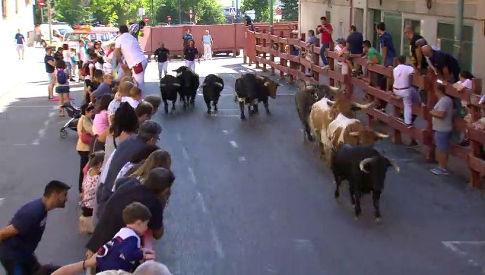 Así se vivirá la semana de encierros en San Sebastián de los Reyes