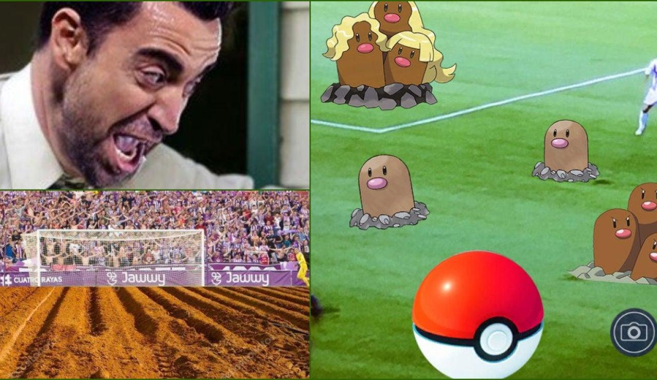 Memes campo Zorrilla