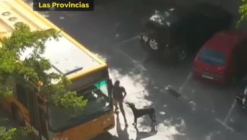 Agresión a un conductor de autobús en Valencia