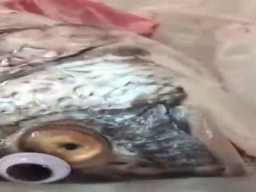 Una pescadería de Kuwait pone ojos de plástico a los pescados para que parezcan frescos