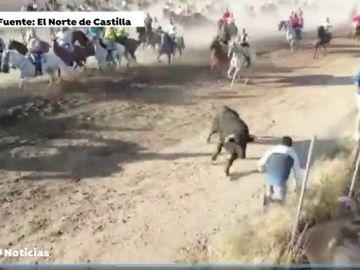 Herido de gravedad al ser corneado por un novillo en Medina del Campo