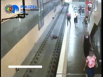 Un joven tira a las vías del metro a un hombre en Alemania tras discutir con su novia