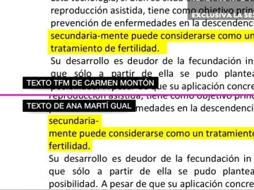 Montón plagió varios textos de otros autores y de Wikipedia