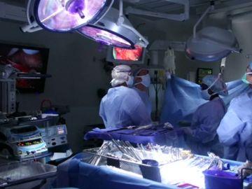 Cuatro mujeres contraen cáncer de mama tras recibir órganos del mismo donante