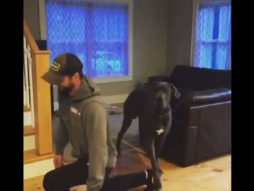 Este perro intenta imitar a su dueño y el resultado te hará reír