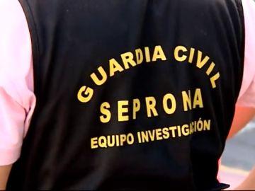 Emergencias atiende más de 100 llamadas de afectados por picores y molestias en Isla Cristina