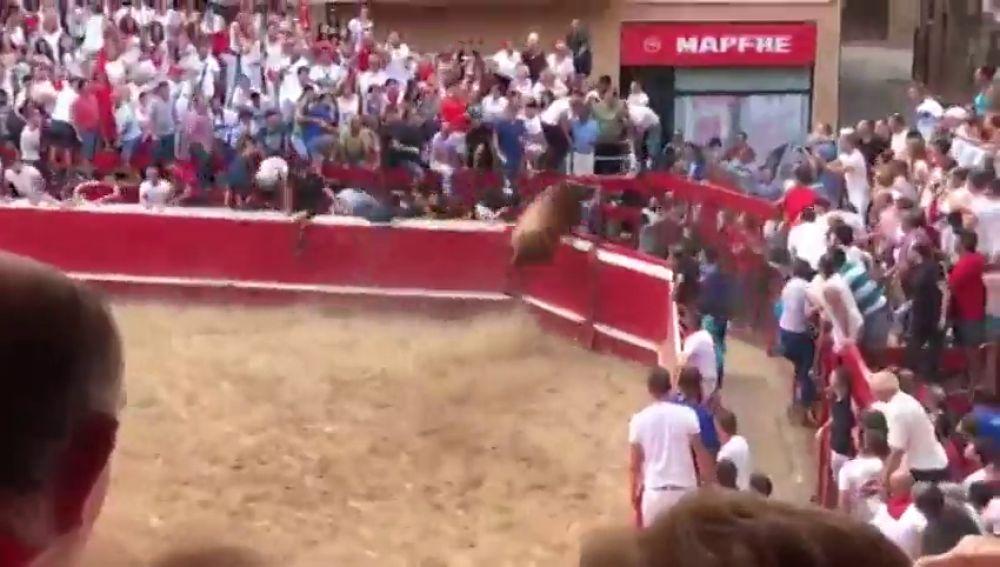 Un novillo salta las vallas en la plaza de Villafranca y se da a la fuga por el pueblo