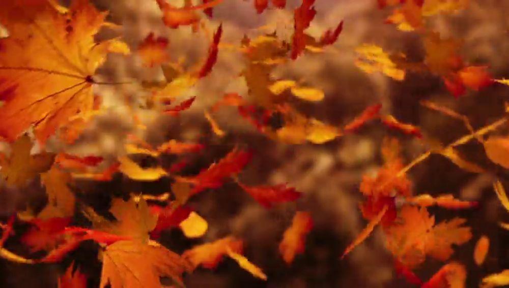 El otoño llega este domingo ¿será el último en el que atrasemos la hora?