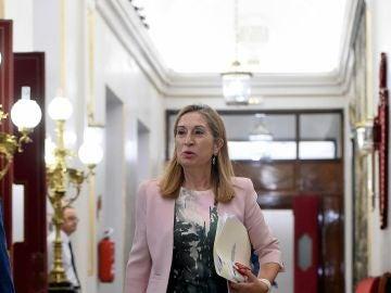 La presidenta del Congreso Ana Pastor