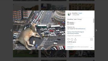 Un gato gigante se come el tráfico de la ciudad