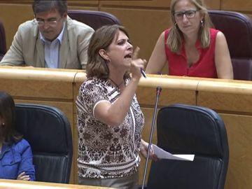 """Delgado afronta la sesión en el Senado entre los gritos de """"dimisión"""" de la bancada del PP"""