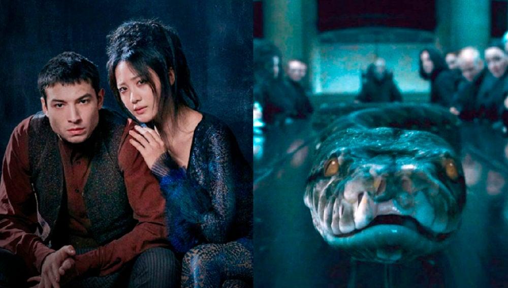 Nagini aparece en 'Animales Fantásticos: Los crímenes de Grindelwald'