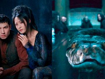 Nagini aparece en 'Animales Fantásticos: Los crímenes de Grindelwald' y estamos colapsando