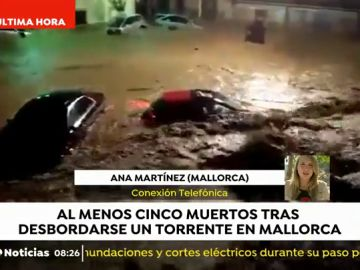 REEMPLAZO Cinco muertos en Mallorca