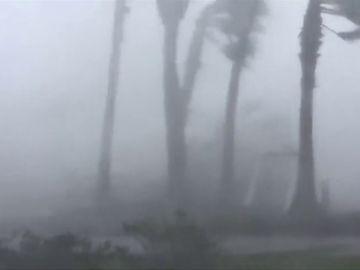 'Michael' toca tierra en Florida como un huracán de categoría cuatro y deja al menos un muerto