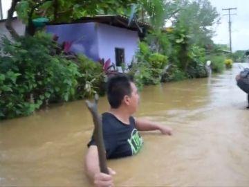 Tormenta tropical Vicente deja 7 muertos y ciudades inundadas en México