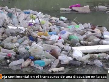 Encuentran por primera vez muestras de microplásticos en heces humanas