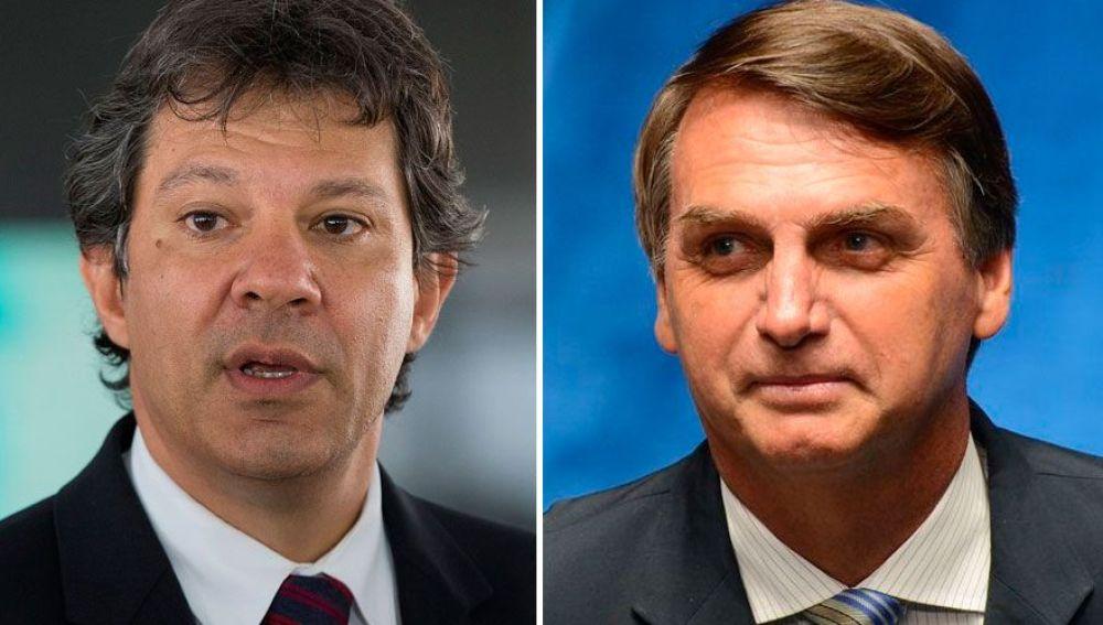 Haddad y Bolsonaro