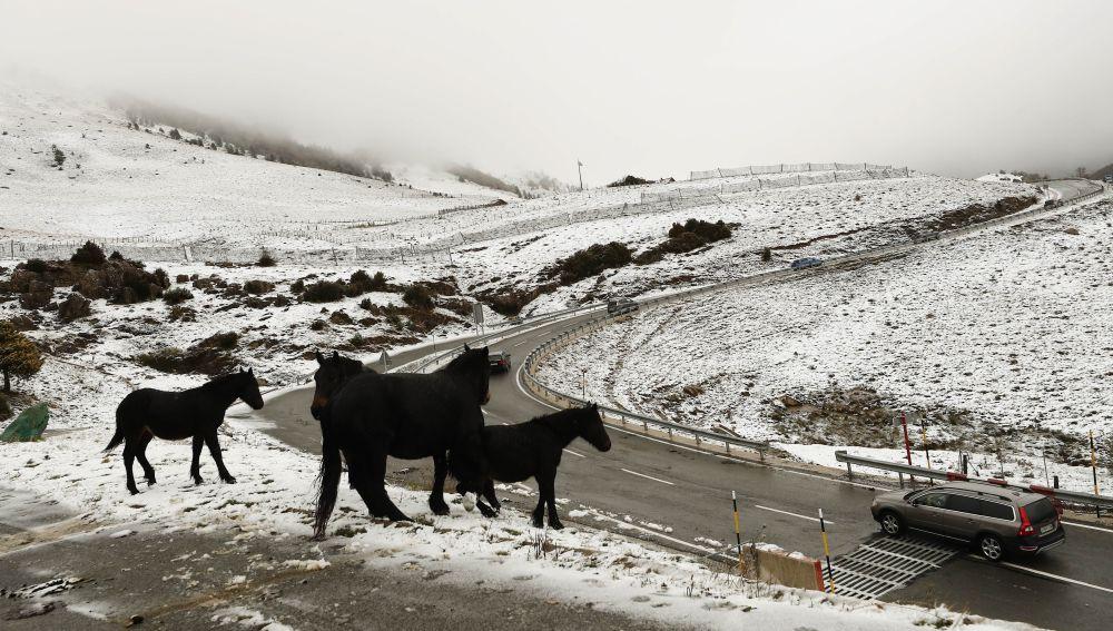 Temporal de nieve en Asturias