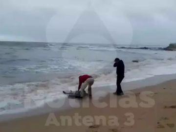 Hallan el cadáver de un hombre en la playa de Zahora