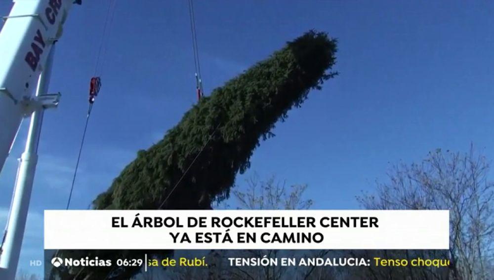 Nueva York se prepara para instalar su famoso árbol de Navidad en la plaza Rockefeller
