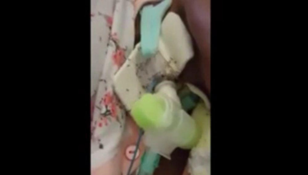 Mujer cubierta por hormigas en un hospital de Italia