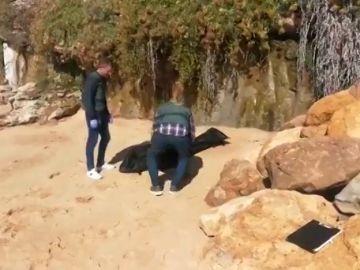 Hallados 17 cadáveres de la patera naufragada en Los Caños de Meca