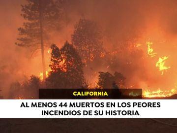 #AhoraEnElMundo, las noticias internacionales que están marcando este martes 13 de noviembre
